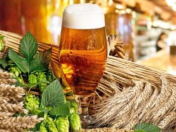 Bier brauen beim JGA