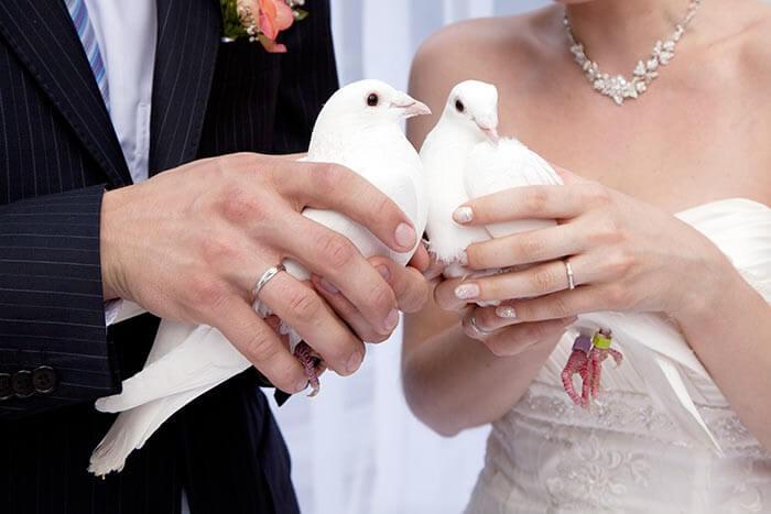 Hochzeitsbrauch Tauben fliegen lassen