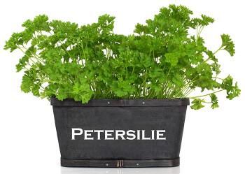 Petersilienhochzeit Geschenke