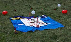 Verlobung Picknick Wiese