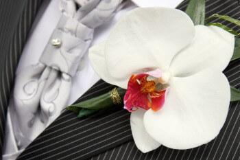 Blumenanstecker Bräutigam