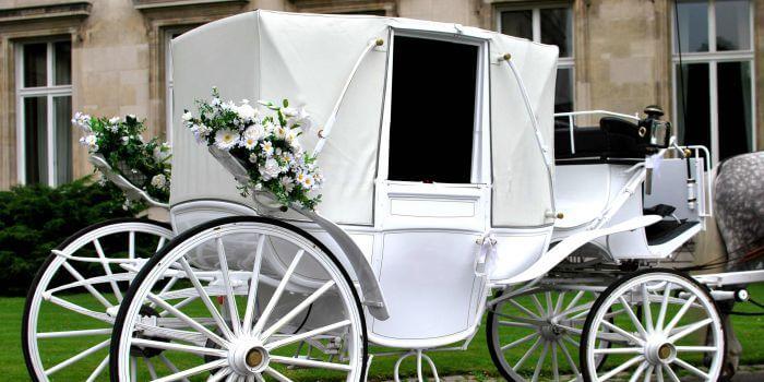 Kutscherspiel Hochzeit