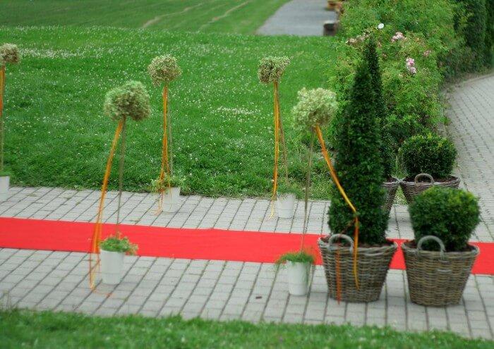 Trauung im Freien roter Teppich