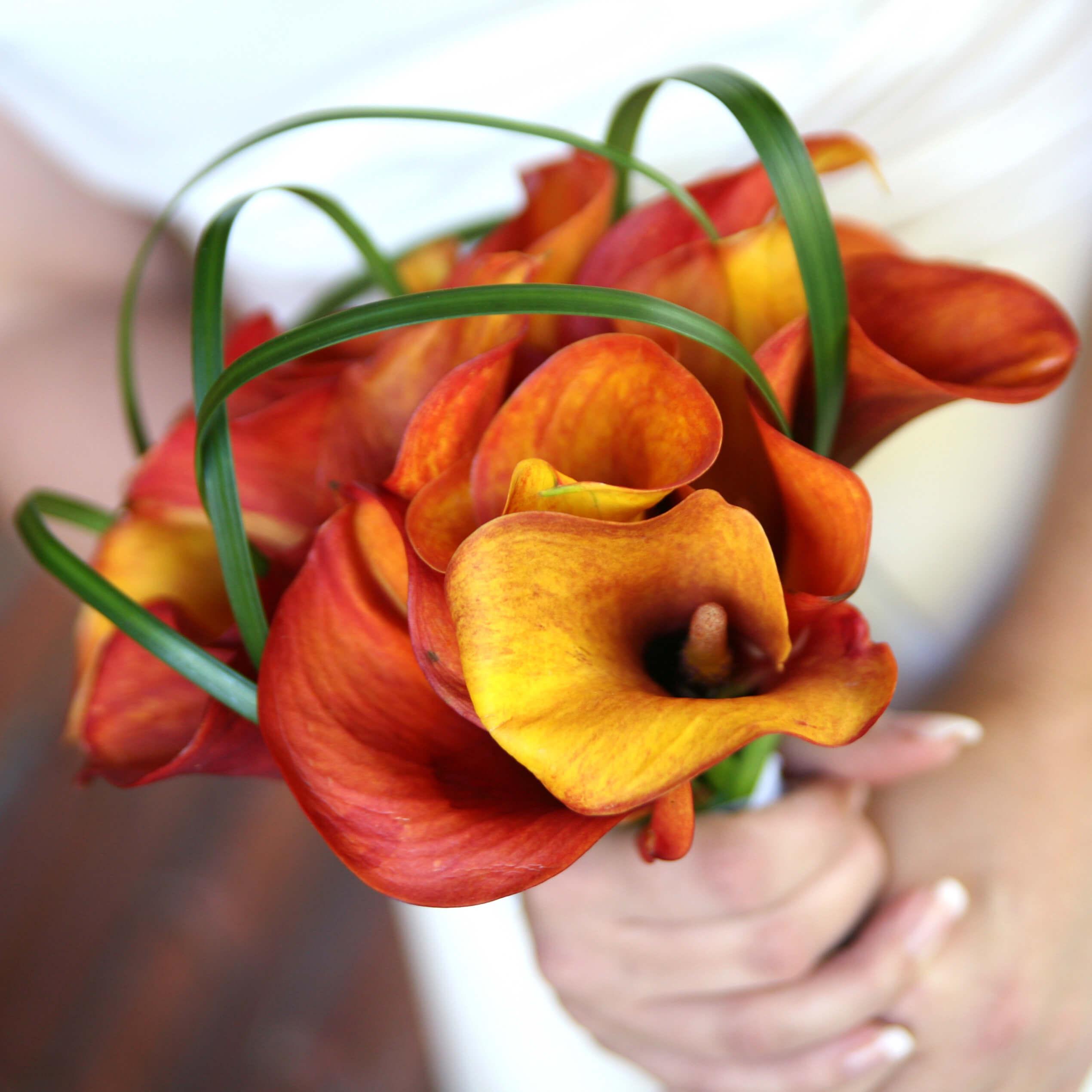 Brautstrauß Calla Orange Rot