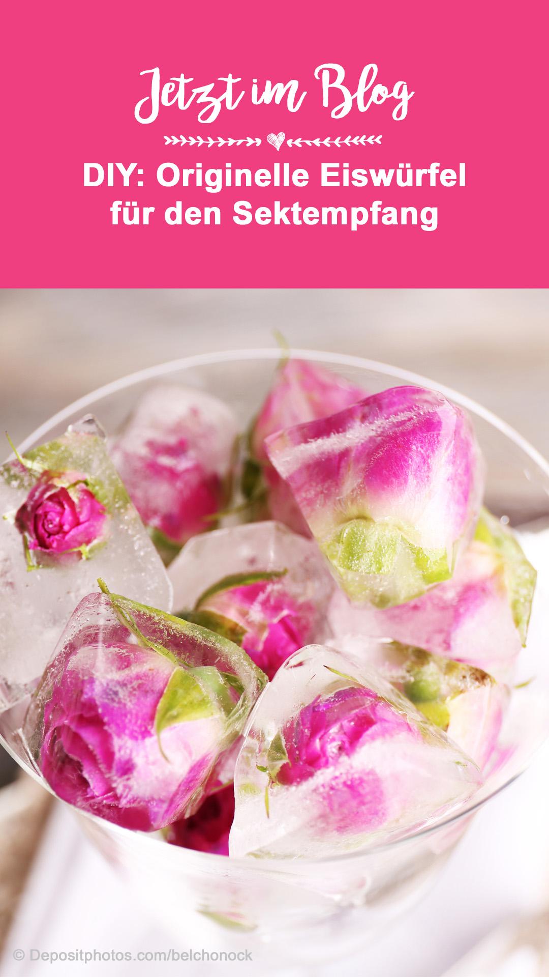Frucht-Eiswürfel selber machen