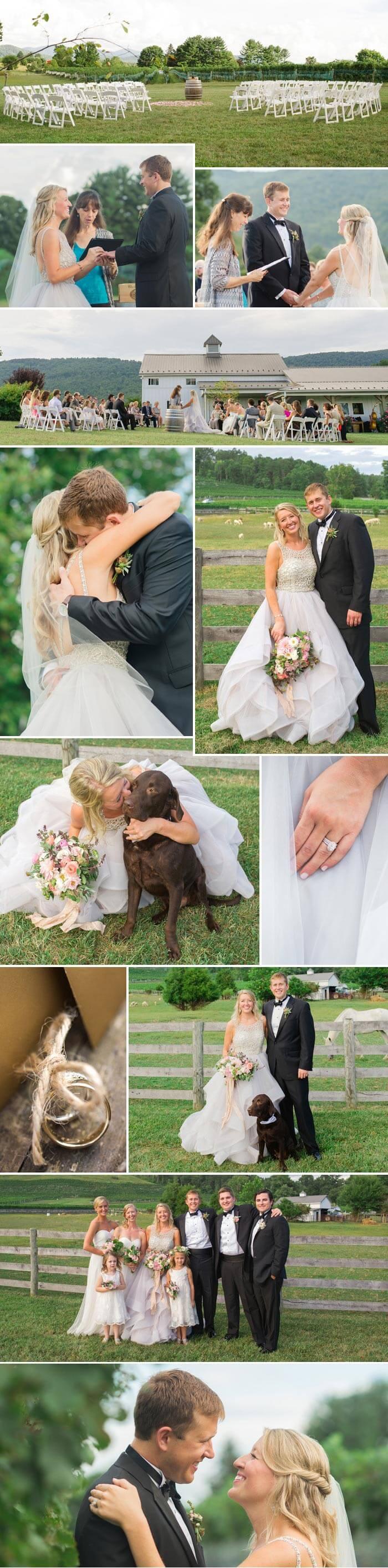 Zelt Hochzeit Trauung