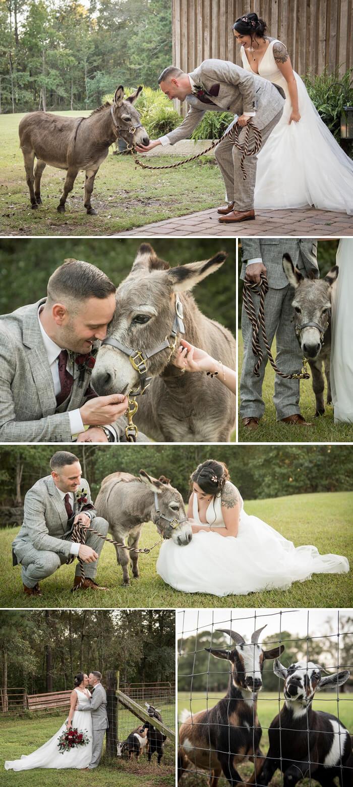 Heiraten Bauernhof
