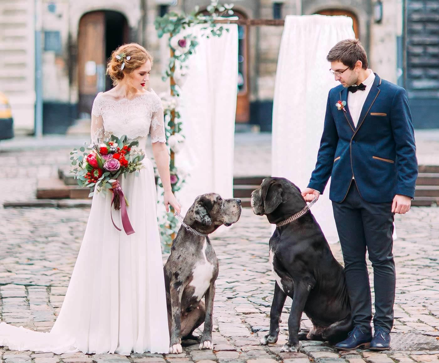 Heiraten zu Zweit mit Hund
