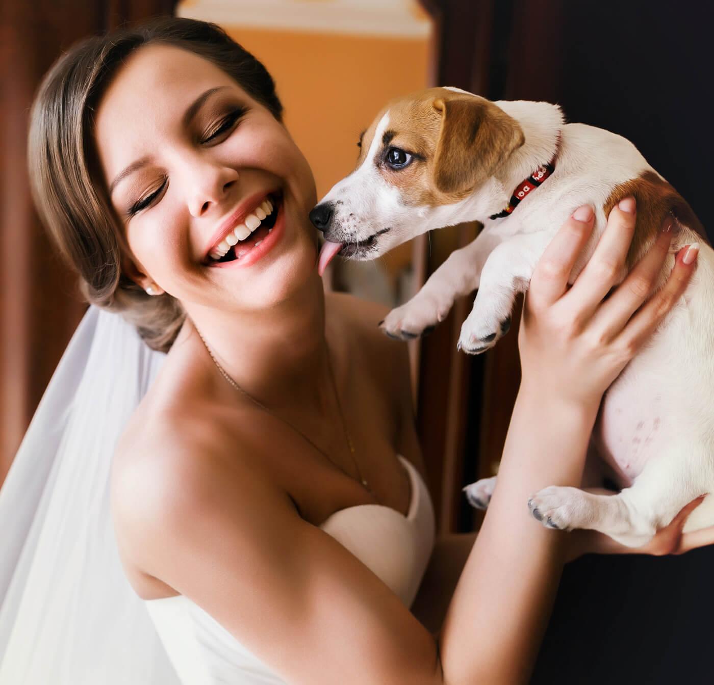 Hochzeit mit Hund