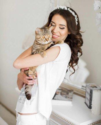 Katzen Hochzeit
