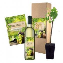 Hochzeitsgeschenk Wein