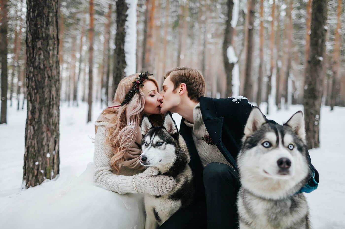 Hochzeitsfotos mit Huskies