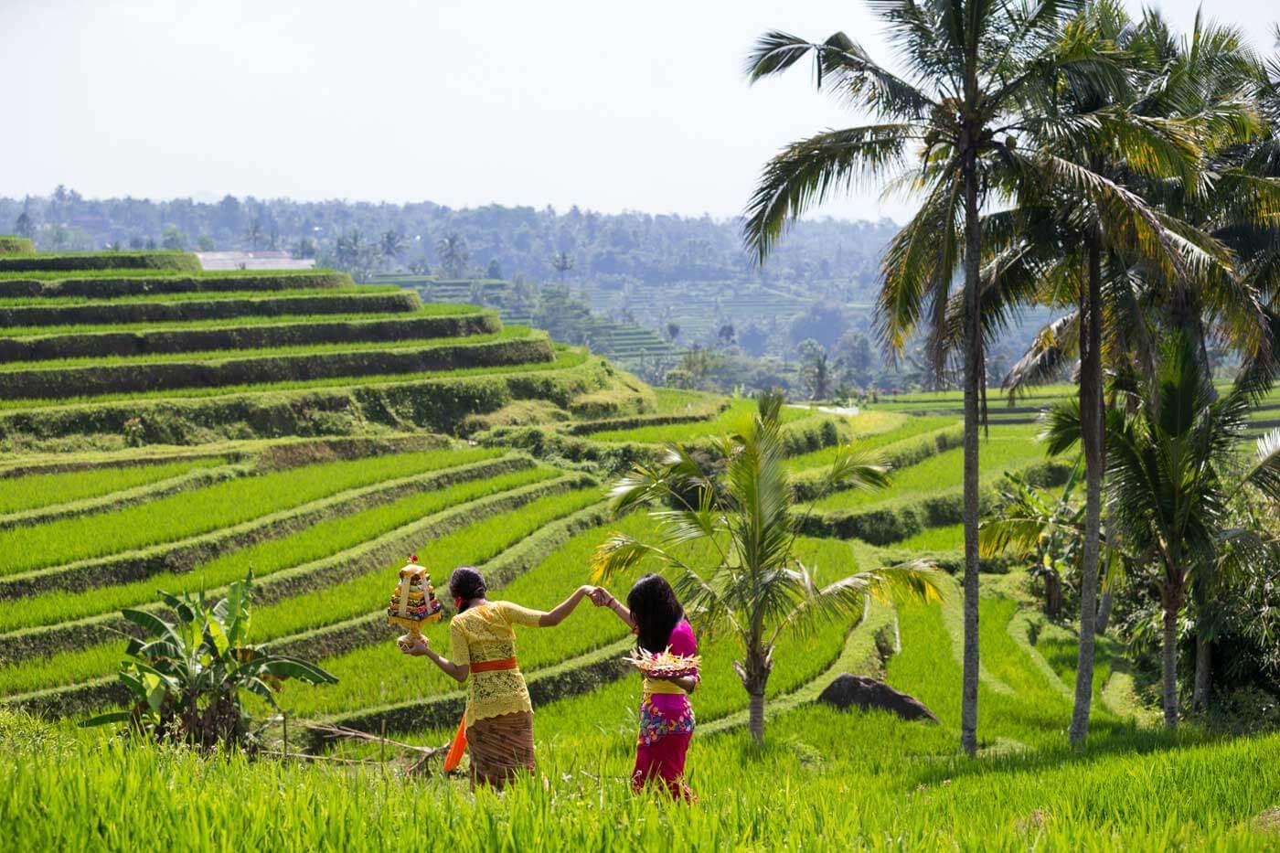 Bali Flitterwochen Erfahrungen
