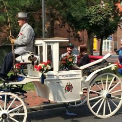 Heiratsantrag Pferdekutsche